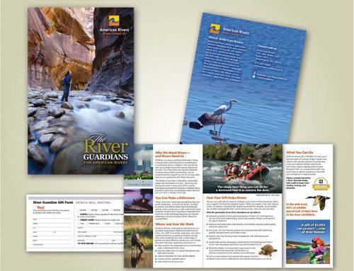 Reports + Publications